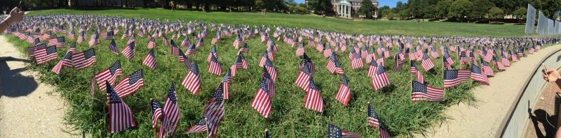 Flags are decorated across the Mall in commemoration of Sept. 11. (Julia Lerner/Bloc Reporter)