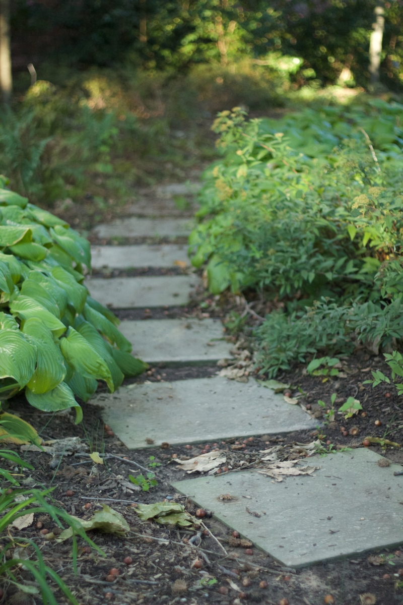 Paths lead from one end of the garden to the other, through the plants. (Julia Lerner/Bloc Reporter)