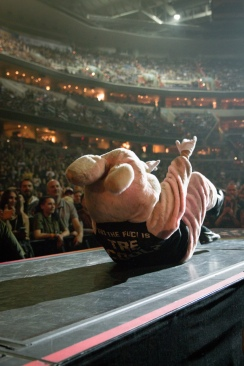 "The ""drunk bunny"" riles up the crowd at the Verizon Center before Green Day takes the stage. (Casey Tomchek/Freelance photographer)"