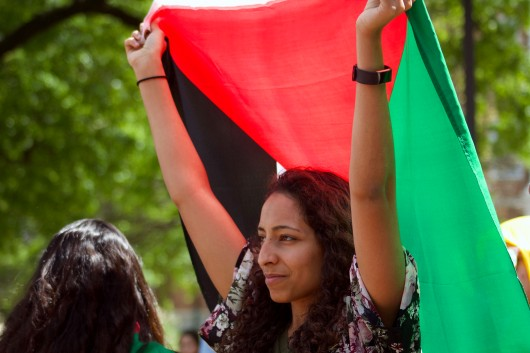 Laila Abujuma, a sophomore biology major, attended the Israelfest Boycott with a Palestinian flag this year, and attended the protest last year. (Julia Lerner/Photography Editor)
